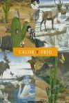 CALOR Y FRIO