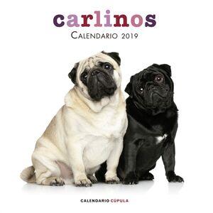 CALENDARIO CARLINOS 2019