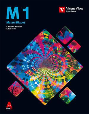 M 1 (MATEMATIQUES TECNIQUES) BATXILLERAT AULA 3D