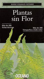 PLANTAS SIN FLOR