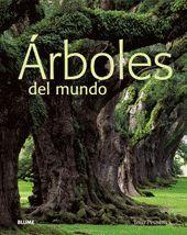 ÁRBOLES DEL MUNDO