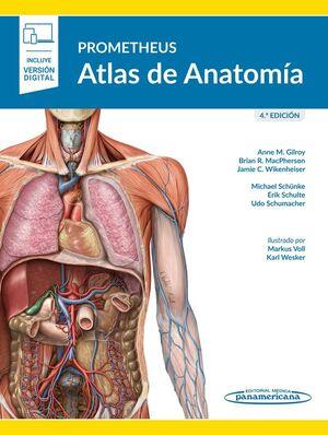 PROMETHEUS. ATLAS DE ANATOMÍA 4º ED  (E-BOOK)
