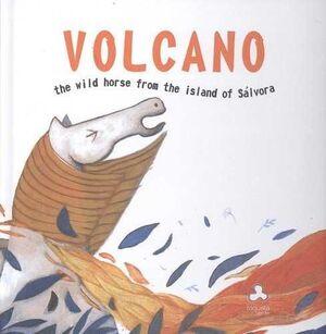 VOLCÁN, THE WILD HORSE FROM THE ISLAND OF SÁLVORA